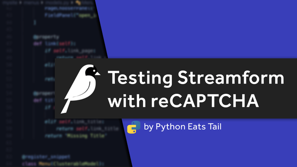 27. Testing Streamform with reCATPCHA video image