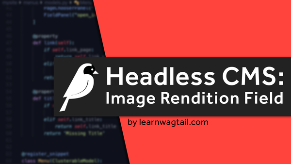 Headless CMS: Image Rendition Field video image